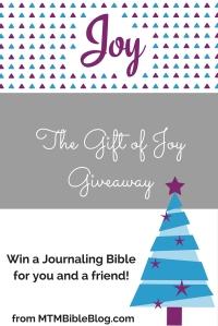 The Gift of Joy Giveawaywordpress (1)