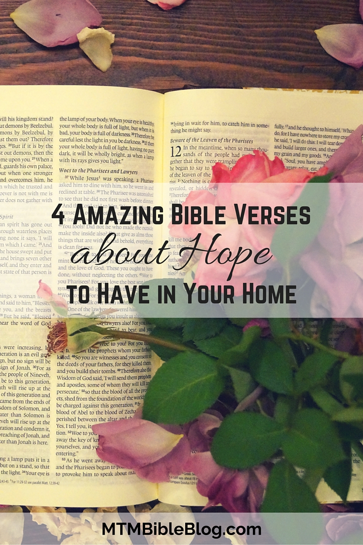 Bible Quotes About Hope Gorgeous 4 Amazing Bible Verses About Hope To Have In Your Home