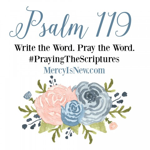 Psalm-119-Write-the-Word-Pray-the-Word-2-480x480